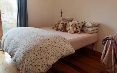 How To Remove Mould From A Mattress